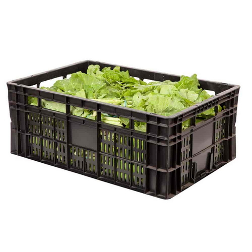 caixas plásticas agrícola comprar em sp