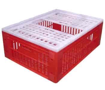 caixas plásticas agrícolas sp